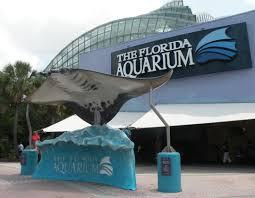 tampa_aquarium