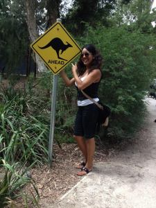 Xiomara  Rivera didn't have any problem finding kangaroos in Australia with this kind of signage!